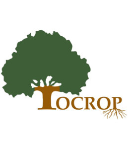 logo-tocrop