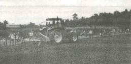 NLSD 2002